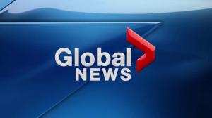 Global News Hour at 6 Edmonton: Jan. 21